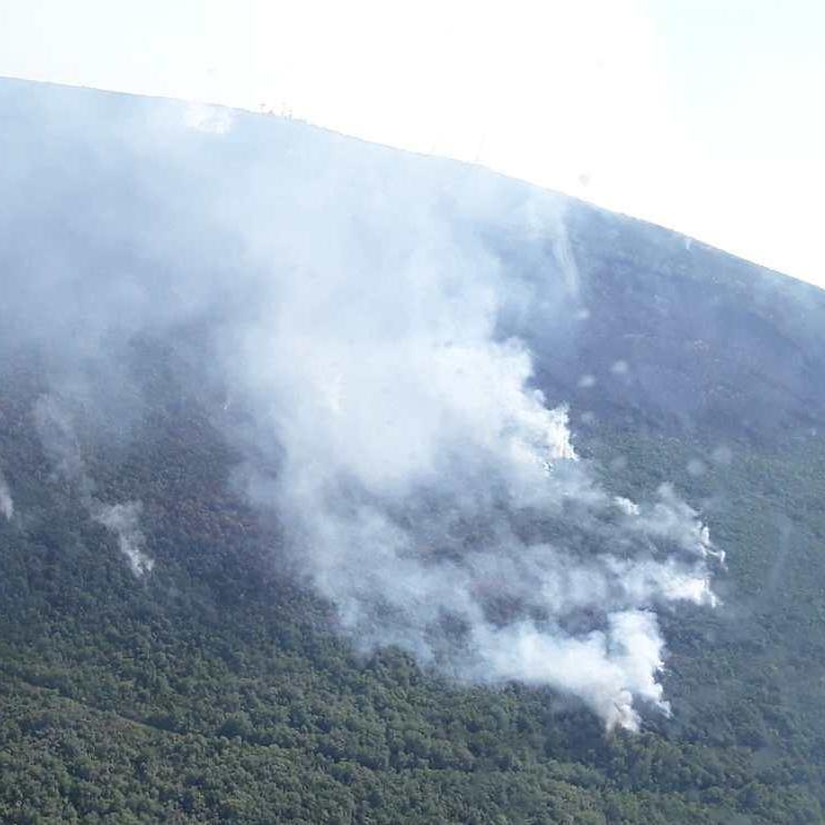 У Чорногорії поляк загубився в лісі й розпочав пожежу, щоб його знайшли