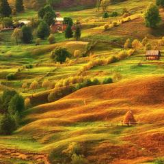 Якою погодою розпочнеться осінь: прогноз синоптиків