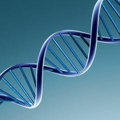 Вчені тепер можуть прогнозувати тривалість життя