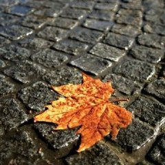 У неділю, 3 вересня, в Україні збережеться тепла погода, - Діденко