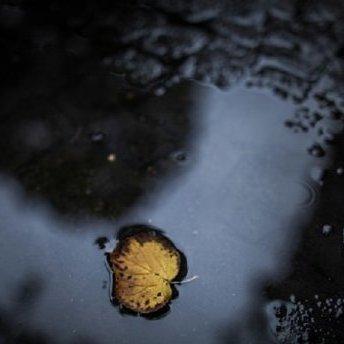 Погода на значній території України у понеділок, 4 вересня, погіршиться, - синоптик