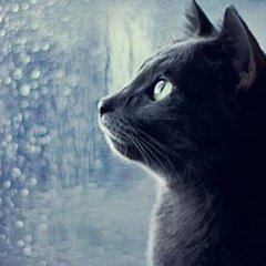 В Україні погода 7 вересня буде мінливою