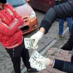 У Хмельницькому  громадські активісти вимагали 10 тис. доларів хабара у забудовників