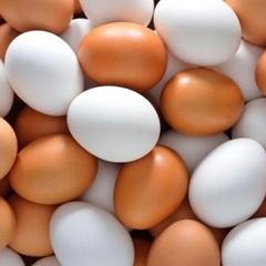 За місяць ціни на яйця зросли на 64% - Держслужба статистики