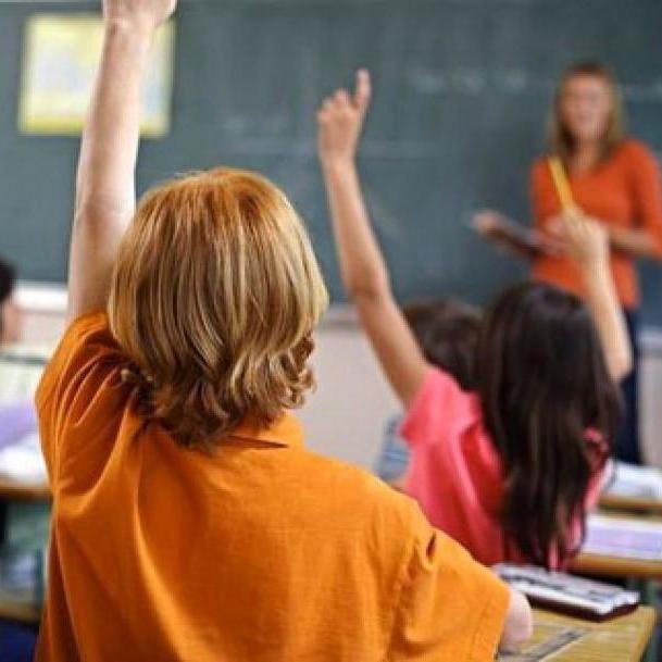Чотири країни звернулися в ОБСЄ через український закон про освіту