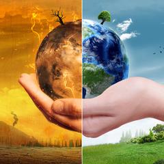 Як американка дбає про екологію на Тернопільщині