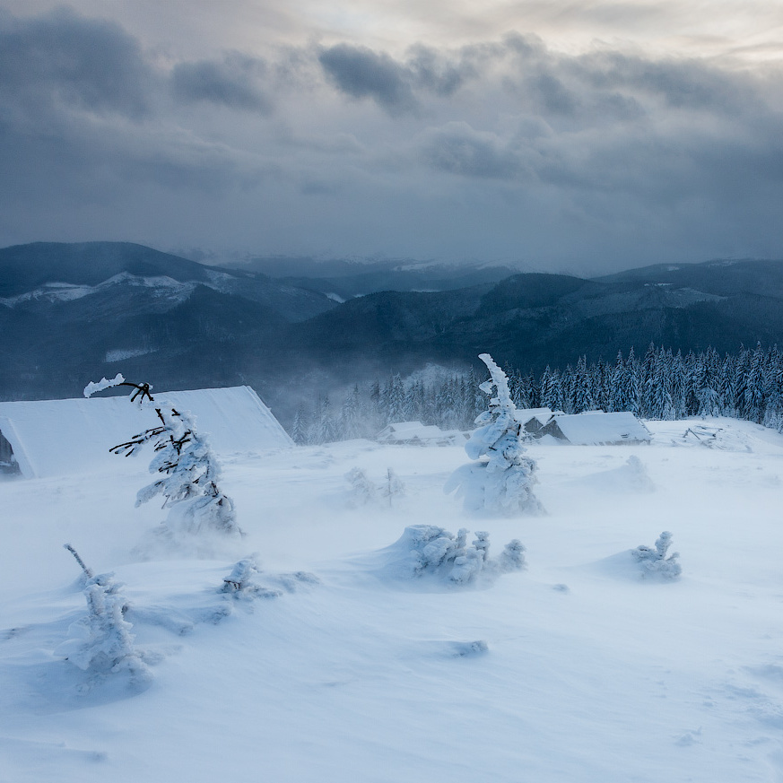 Кліматологи стверджують, що людство цьогоріч чекає найсуворіша зима за останні 100 років