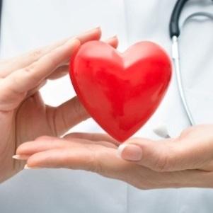 Вчені розробили успішну методику лікування ішемії