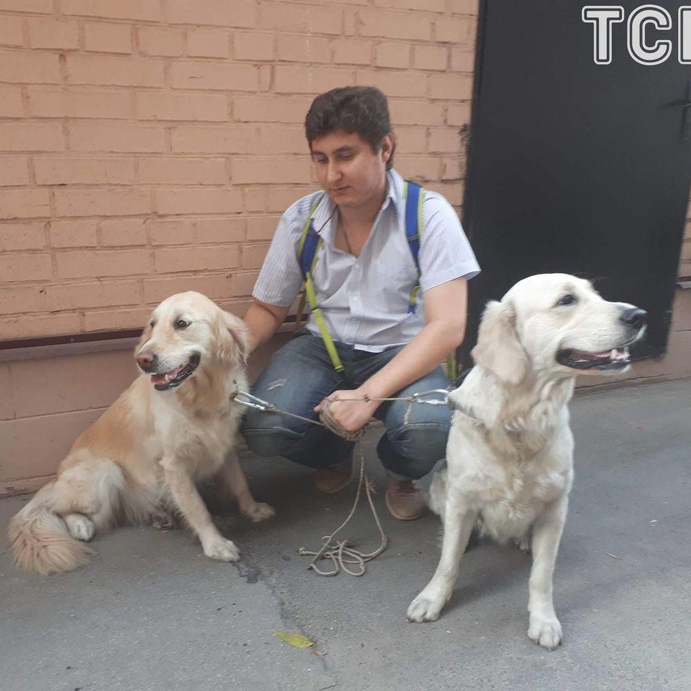 У Києві рятувальники витягли із вогню двох собак