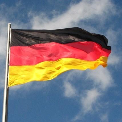 Німеччина надала притулок 196 громадянам Туреччини з диппаспортами