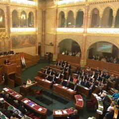 Парламент Угорщини одноголосно засудив український закон про освіту