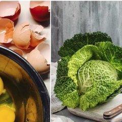 Які продукти потрібно споживати восени для кращого засвоєння кальцію