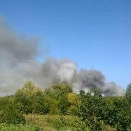 Масштабна лісова пожежа на Харківщині: залучено пожежний літак (фото)