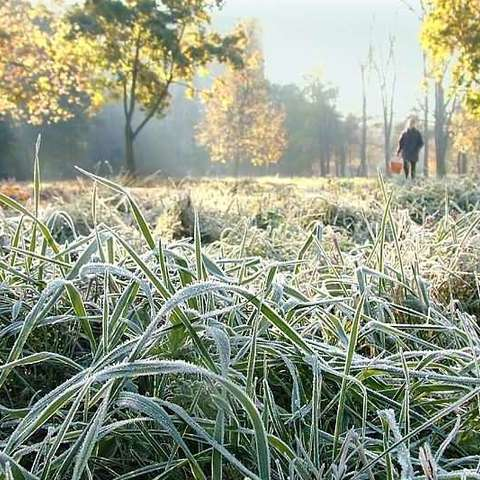 В Україну йдуть перші заморозки: прогноз погоди на 27 вересня