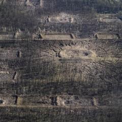 На військовому складі на Вінничині триває поодинока детонація боєприпасів, - ДСНС