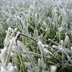 Синоптики попереджають про заморозки в Україні 3-4 жовтня