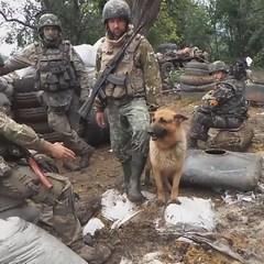 У законопроекті про реінтеграцію Донбасу Росію названо агресором