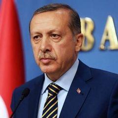Ердоган приїде до України з офіційним візитом