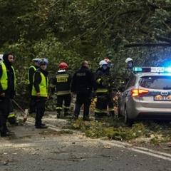 Ураган «Ксав'єр» дістався Польщі: є жертви