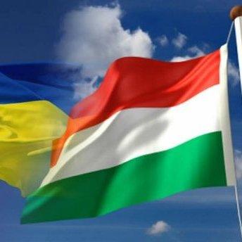 Українські угорці розкритикували сепаратистську акцію на Закарпатті