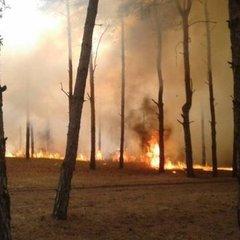 Лісові пожежі у Канаді: 2 тисячі постраждалих