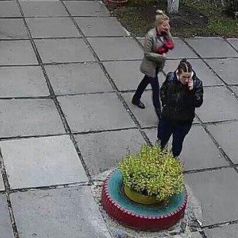 З'явився детальний опис підозрюваної у викраденні малюка у Києві (фото)