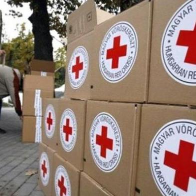 Червоний Хрест вирішив призупинити поставку гумдопомоги на Донбас