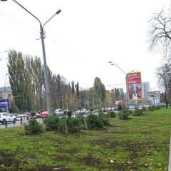 Зеленбудівці відкрили оновлену зелену зону на проспекті Перемоги (фото)