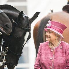 Королева Британії заробила 7,5 млн євро на кінних перегонах