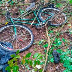 На Житомирщині загубився 62-річний чоловік, у якого під час поїздки у ліс трапився інсульт