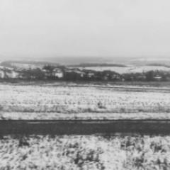 На Харківщині випав перший сніг (фото, відео)