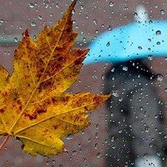 Сьогодні в Україні пройдуть дощі, на заході до +15° (карта)
