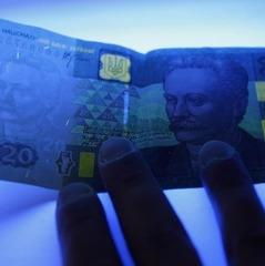 На рахунках Київської митниці заарештували майже півмільярда гривень
