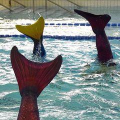 У Фінляндії відкрилася школа для маленьких русалочок