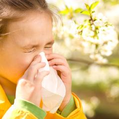 Чим більше стерильні умови життя дитини, то більше у неї алергії