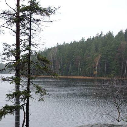 У Фінляндії на поверхні озера відображається обличчя дитини (фото)