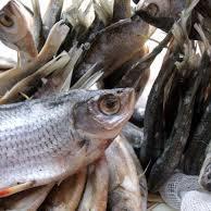 У Києві через в'ялену рибу зафіксований новий випадок ботулізму