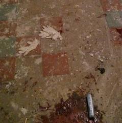 У Дніпрі під час затримання квартирних крадіїв було поранено п'ятьох поліцейських (фото)