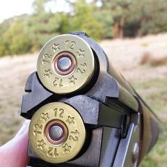 На Миколаївщині п'яний мисливець випадково вистрелив у 9-річну дівчинку: дитина в комі