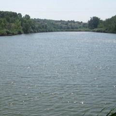 На Львівщині 29-річного чоловіка затягнуло в трубу під час спуску води зі ставка