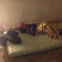 Під Києвом затримали викрадачів 62-річного лікаря: жінку тримали в полоні та знущалися з неї (фото)