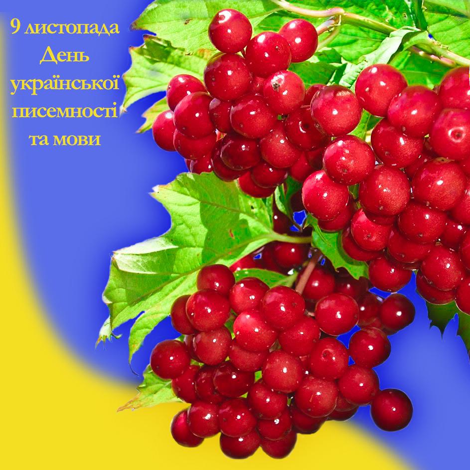 В Україні сьогодні відзначають День української писемності та мови