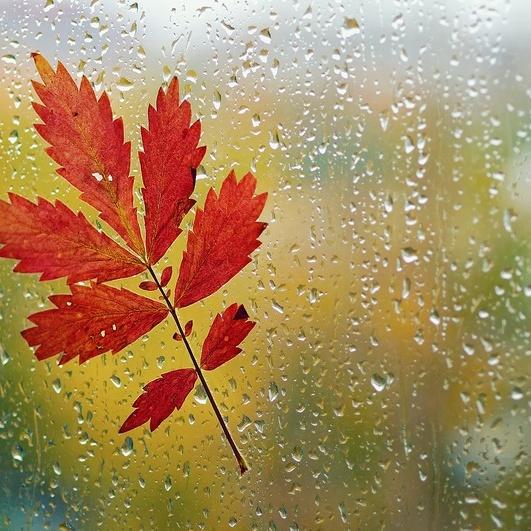В Україні сьогодні пройдуть дощі, місцями температура до +13° (карта)
