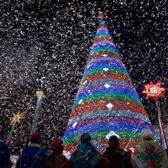 До Києва приїхали звірі з різних країн на Новорічні свята (фото)