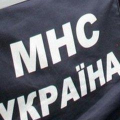 На Львівщині рятувальники витягнули коня із каналізаційного люку