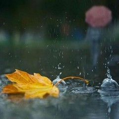 В Україні сьогодні пройдуть дощі, у всіх регіонах трохи потепліє (карта)