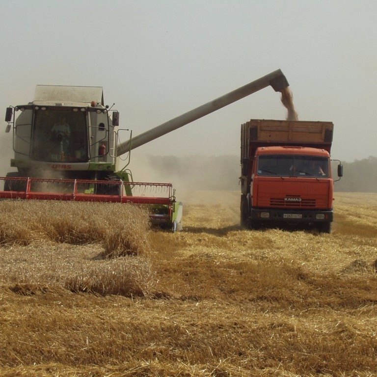 У мешканців окупованих територій ватажки «ДНР» будуть вилучати урожай