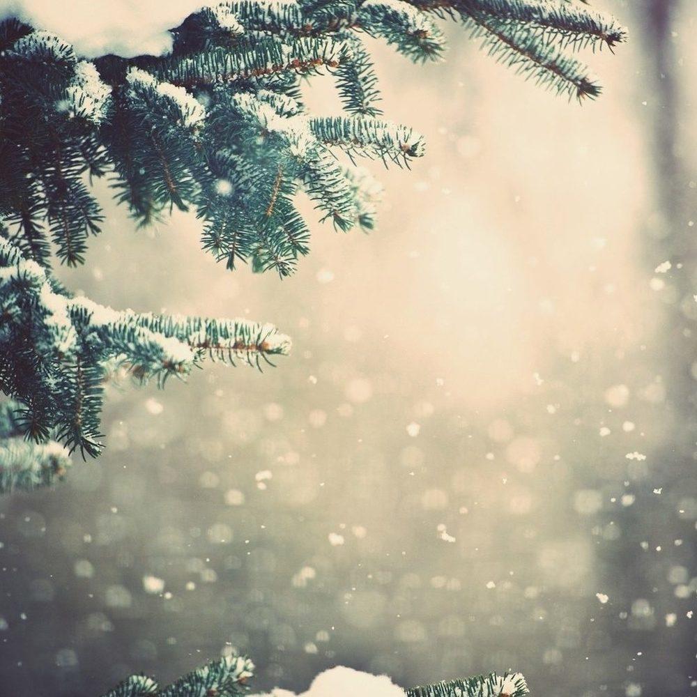 Сніг і зливи: якою буде погода в Україні на вихідні