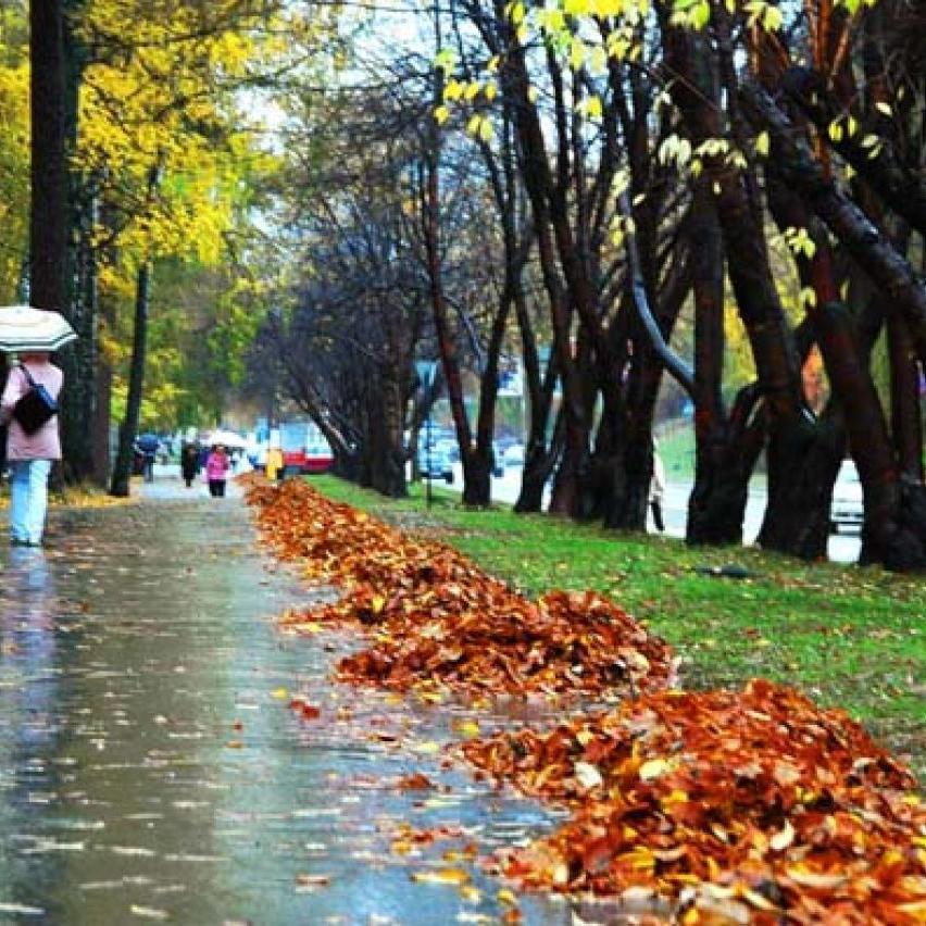 В Україні сьогодні без опадів, на заході потепліє до +9° (карта)