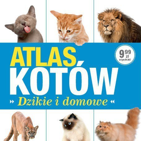 Качинський на засіданні Сейму читав «Атлас котів» (фото)